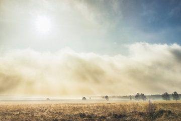 zon en mist op de Ginkelse heide  von Reno  van Dijk