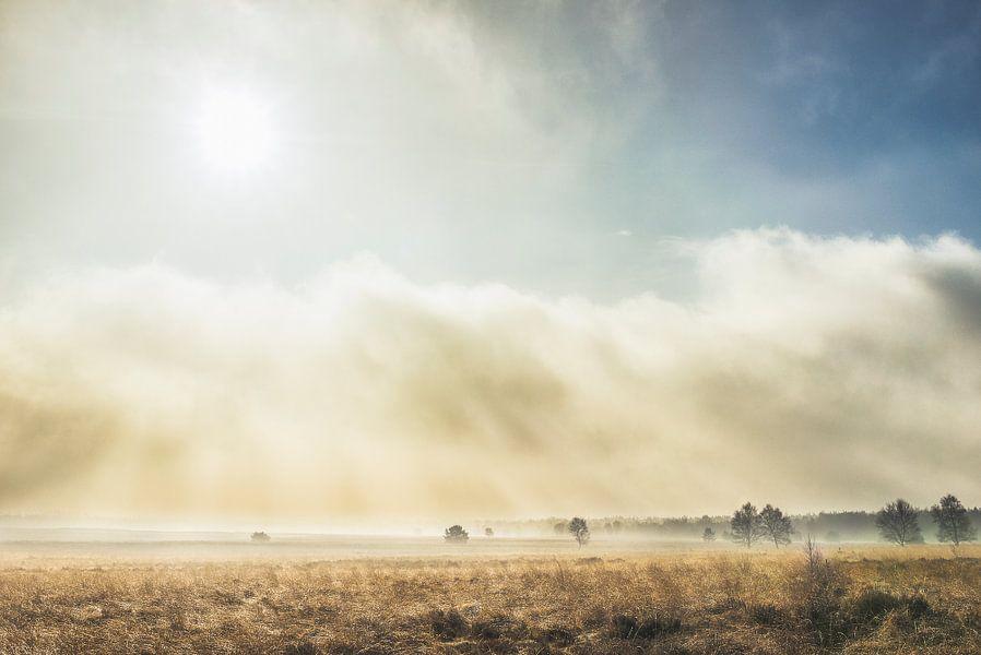 zon en mist op de Ginkelse heide  van Reno  van Dijk