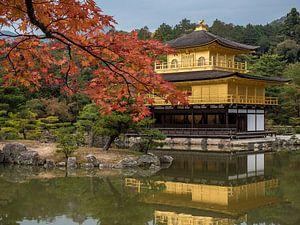 Herfst bij de Gouden Tempel in Kyoto, Japan van