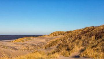 Duin, strand en zee van Bram van Broekhoven