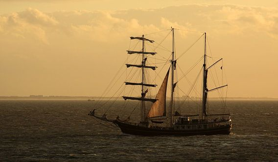 Zeilschip op zee van MSP Photographics