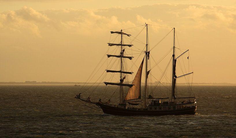 Zeilschip op Oosterschelde van MSP Canvas