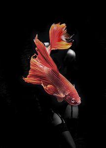 Fishing VII