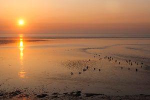Zonsopkomst boven de Waddenzee op Texel van Beschermingswerk voor aan uw muur