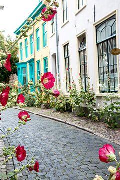 Kleurrijk straatje met bloemen van