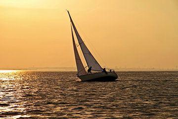 Zeilen op het IJsselmeer bij zonsondergang van Nisangha Masselink