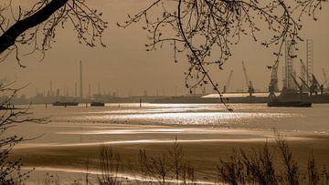 Oeverbos Vlaardingen - Nieuwe Waterweg - Botlek von Karen de Geus