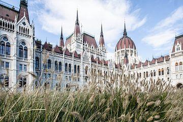 Budapest von Eric van Nieuwland