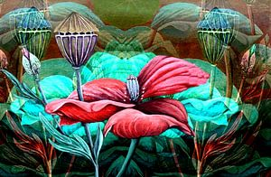 Florale Spielerei A  (Mohn)