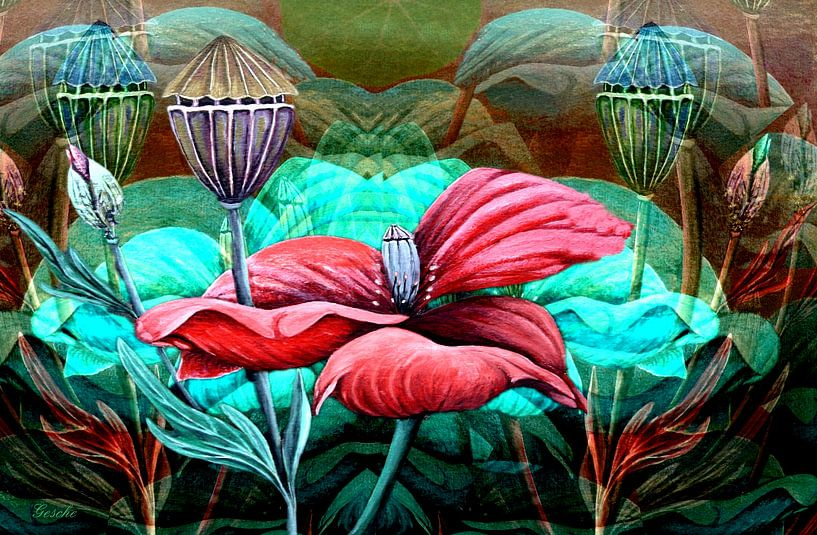 Florale Spielerei A  (Mohn) von Gertrud Scheffler