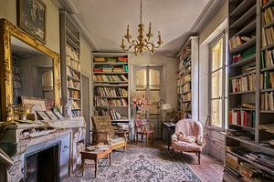 Lost Place - das Bücherzimmer
