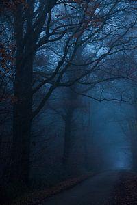 Donkere weg