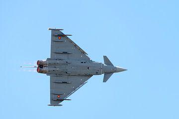 Eurofighter Typhoon van de Spaanse Luchtmacht von Wim Stolwerk