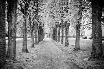 Ehemalige Zufahrt zum Gravenshof in Amby (Maastricht) von Streets of Maastricht