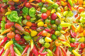 Kleurrijke pepers van