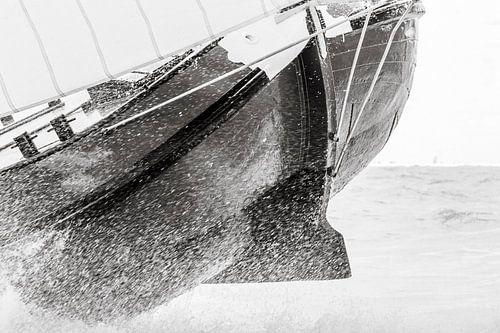 Dansen op de golven van ThomasVaer Tom Coehoorn