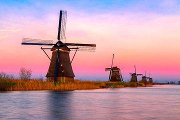Colourful spring break in Kinderdijk, Rotterdam van