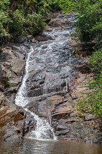 Waterval op het eiland Mahé van de Seychellen van Reiner Conrad