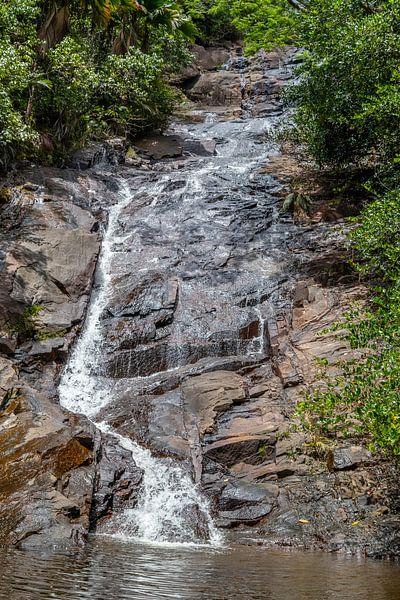 Wasserfall auf der Seychelleninsel Mahé von Reiner Conrad