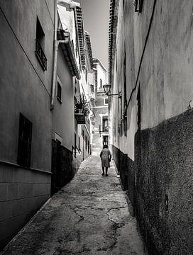 Spanje von Jellie van Althuis