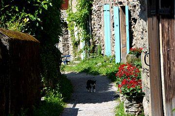 Dorf in Südfrankreich von Greetje Dijkstra