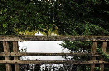 De brug van Anne Sparidans