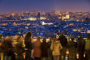 Uitzicht over Parijs in de avond 2