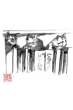 Katzen auf Bücher von philippe imbert