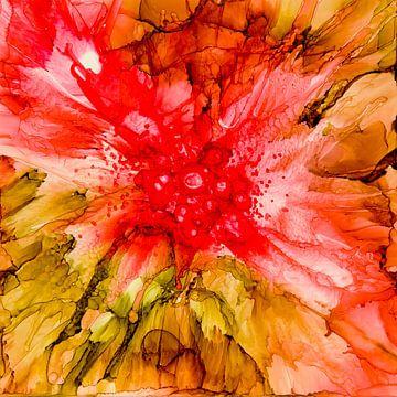 Flamboyant von Agnieszka Zietek