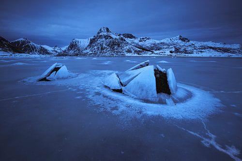Het bevoren fjord. van