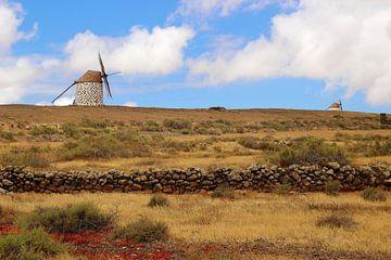 Fuerteventura, Kanarische Inseln