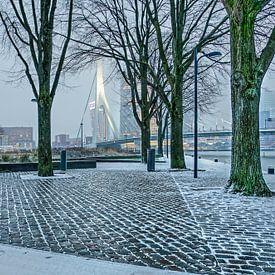 Parc du quay a février sur Frans Blok