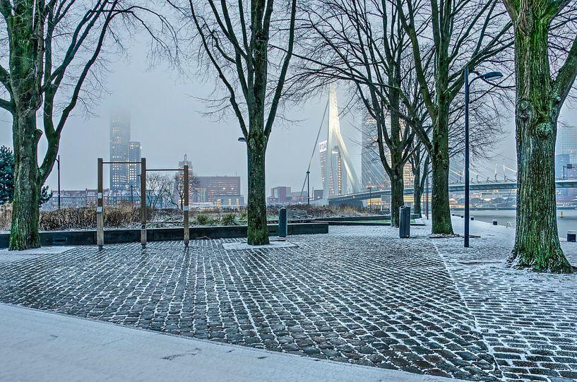 Leuvehoofdpark in februari van Frans Blok