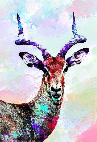 Gazellen Abstrakt in verschiedenen Farben von Art By Dominic
