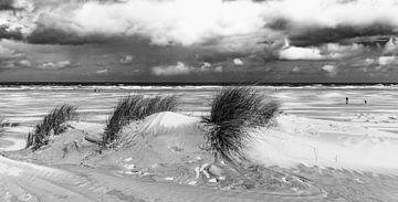 Strand Terschelling van Martien Hoogebeen Fotografie