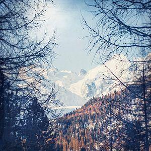 Alpenpieken in de winter