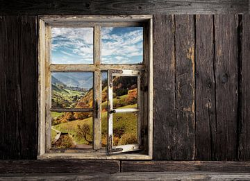 Fensterblick von Jürgen Wiesler