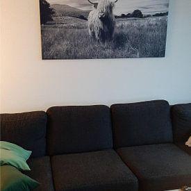 Kundenfoto: Highlander – Schottisches Hochlandrind von Marly Tijhaar, auf leinwand
