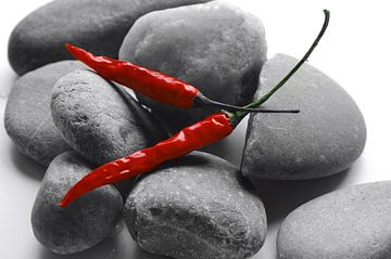 Rode pepers op grijze stenen van Tanja Riedel