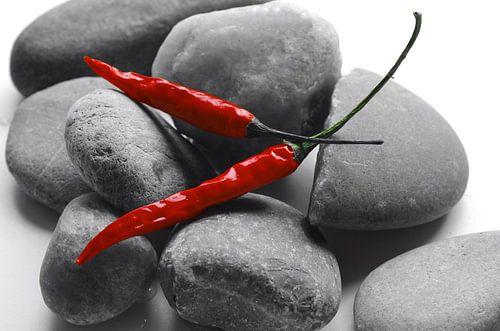 Rode pepers op grijze stenen