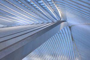 Het dak 2 van Gare Guillemins te Luik Belgie
