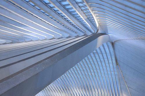 Het dak 2 van Gare Guillemins te Luik Belgie van
