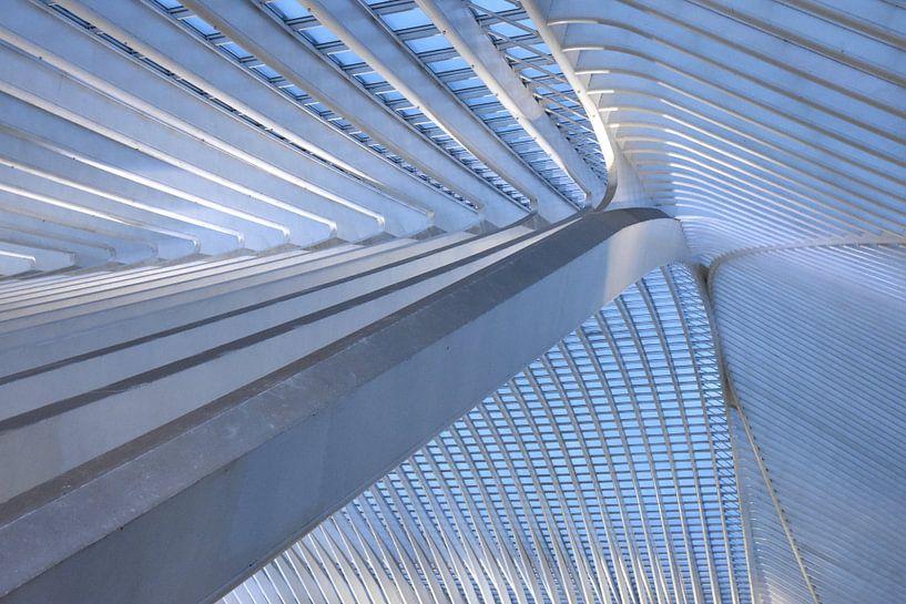 Het dak 2 van Gare Guillemins te Luik Belgie van Ernst van Voorst