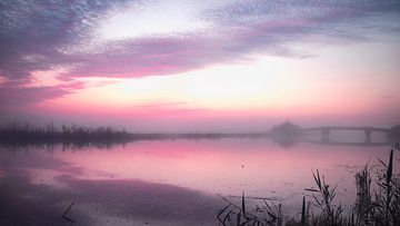 vlak voor de zonsopkomst kleurt de hemel roze van blijdschap van Studio de Waay