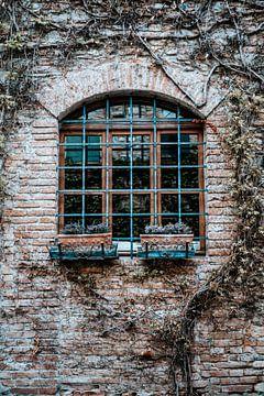 Fenster mit Wand und Natur in Italien von Milene van Arendonk