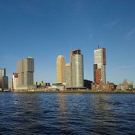 Een varende watertaxi voor de  skyline van Rotterdam met de Erasmusbrug, Nederland. van Tjeerd Kruse