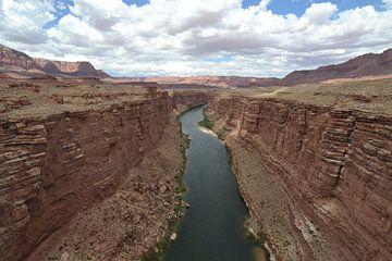 Colorado-Fluss, Arizona von Bernard van Zwol