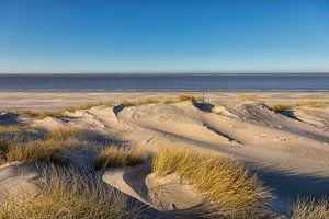 Duinen, Strand en Zee in de winter