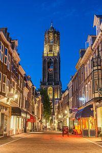 Utrechtse Dom op een zomerse avond