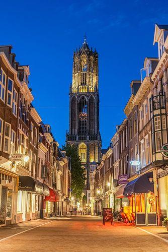 Utrechtse Dom op een zomerse avond van